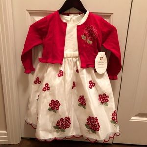 NWT American Princess Special Occasion Dress